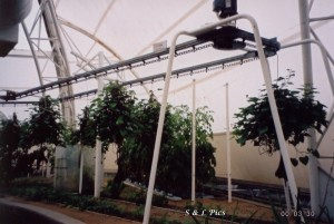 Rotating aerial system on opposite side to nutrient chamber.